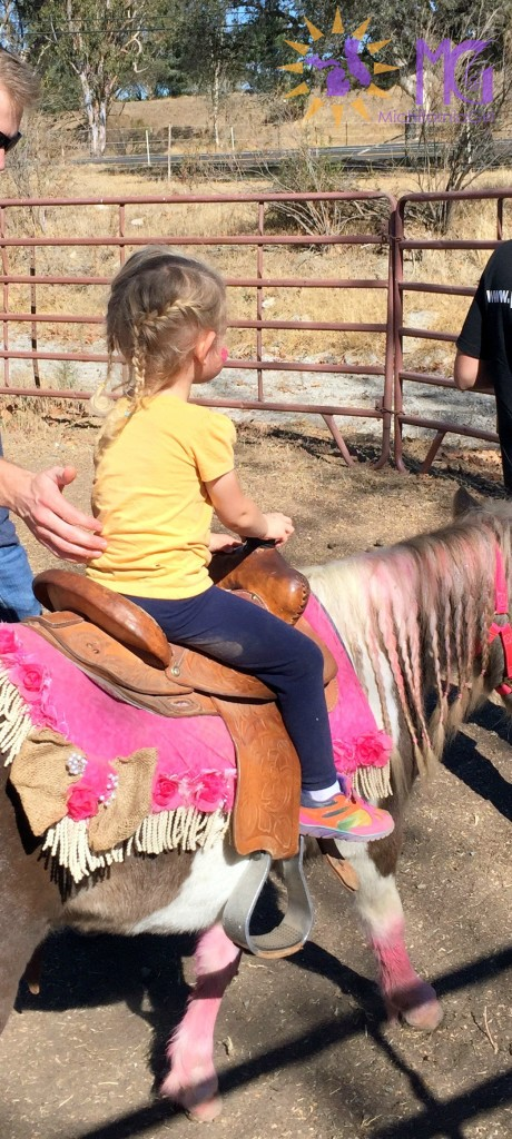 blond girl with braids riding a pink pony