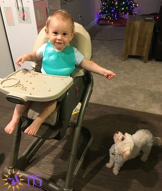 baby in high chair feeding Cheerios to puppy diary of a dog