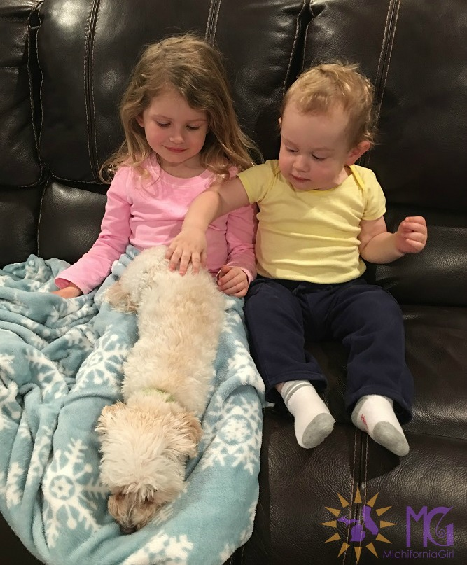 kids petting puppy on couch diary of a dog