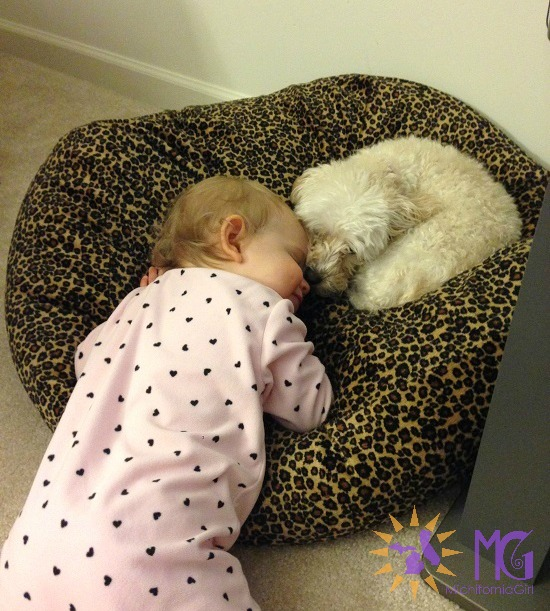 baby snuggling with puppy diary of a dog