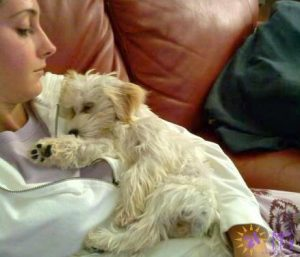 woman holding puppy like a baby diary of a dog