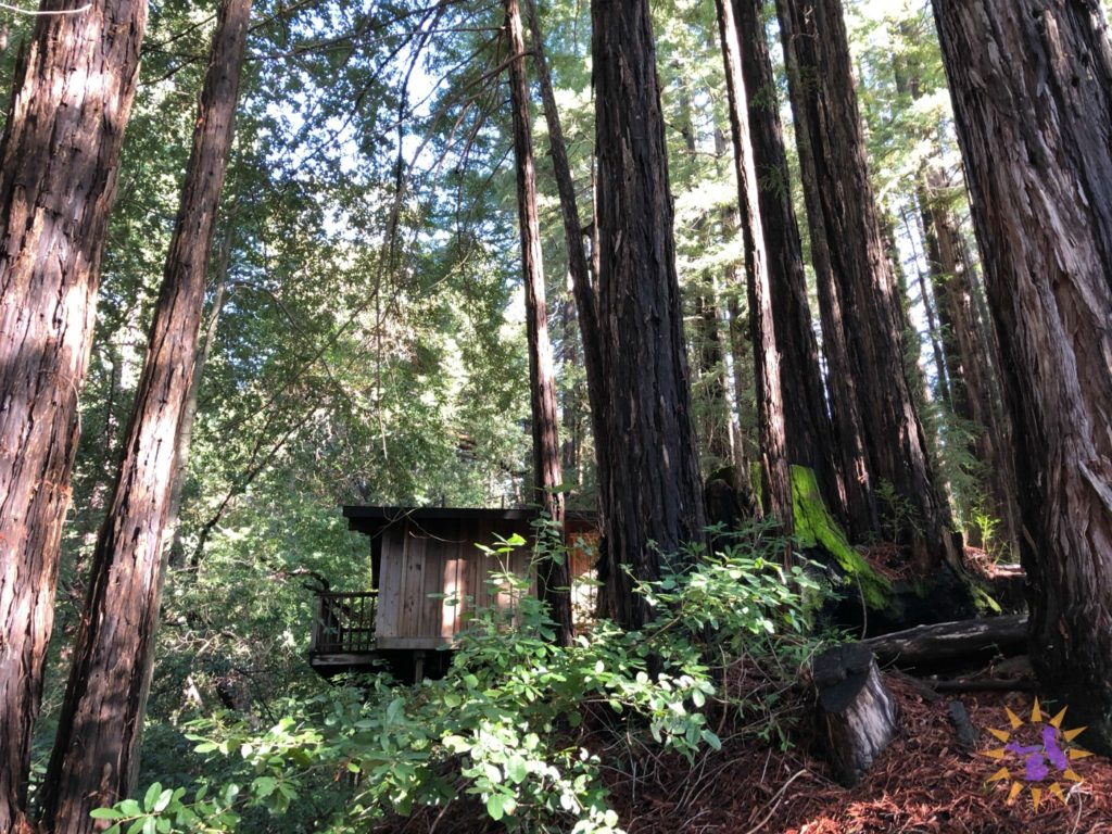 northern california writers' retreat cabin
