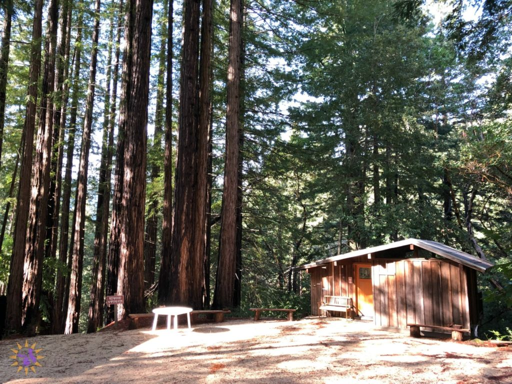 You need to go to the northern california writers 39 retreat for Writers retreat cabin